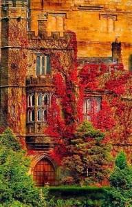 ősz-tavasz táj